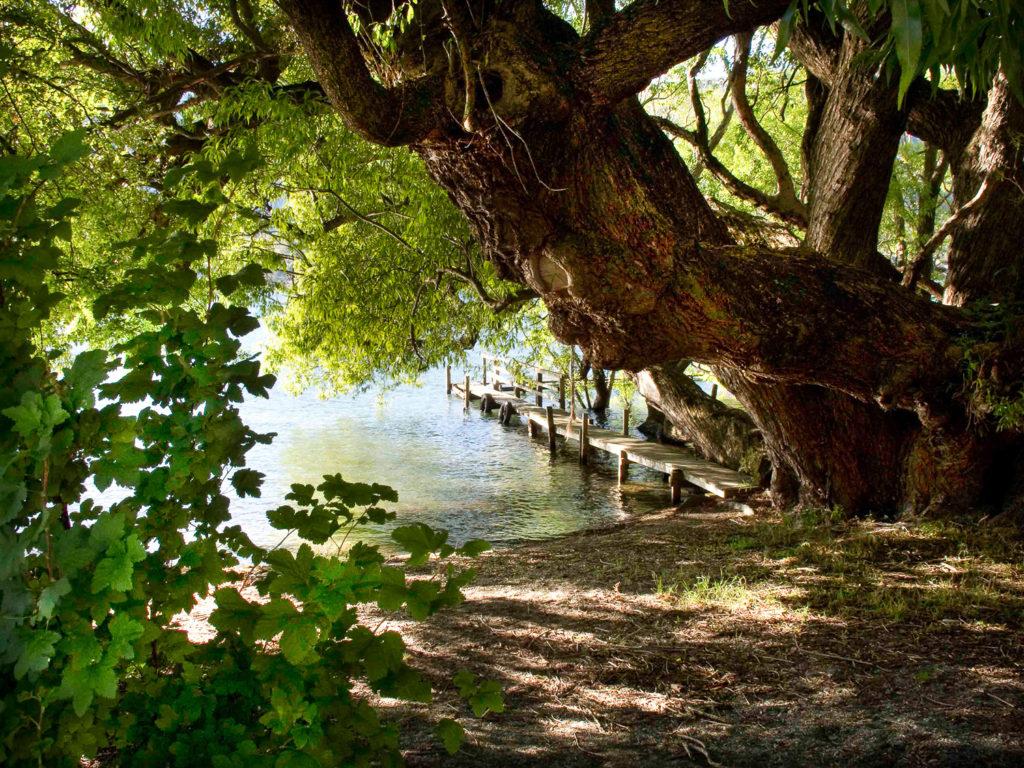 Lake Wakitupu, New Zealand by Sandy Renna