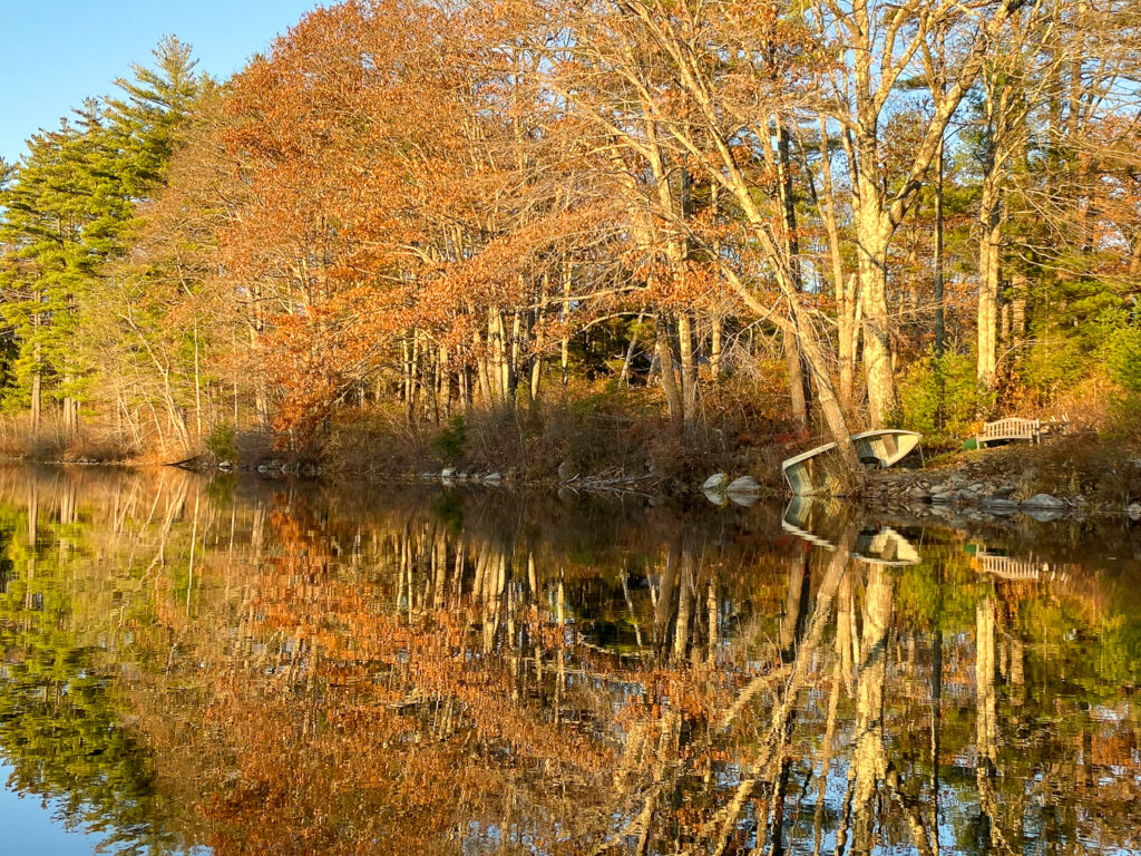 Hastings Pond, Fall Reflections