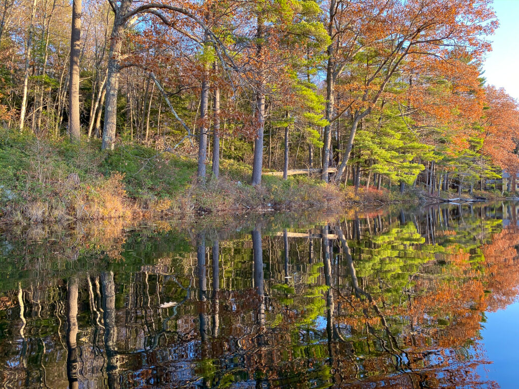Fall Pond Colors