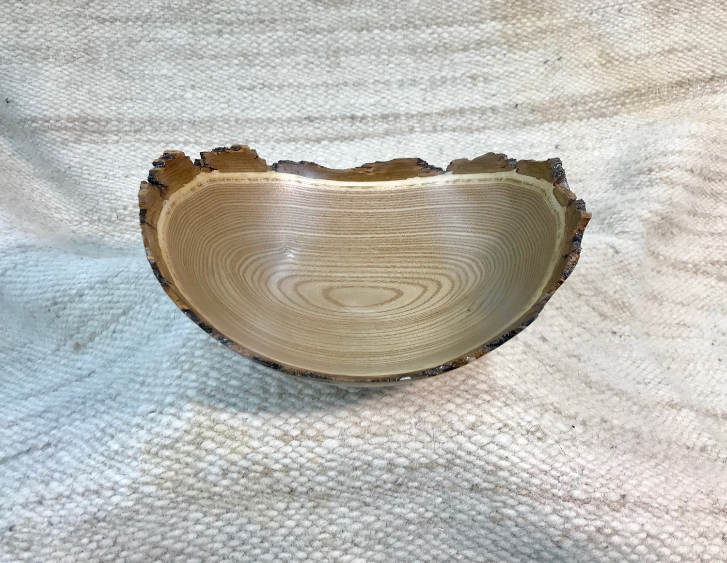 Tulip Wood (Yellow Poplar), natural rim with bark, 8.5x7x3.5 inches by Sandy Renna